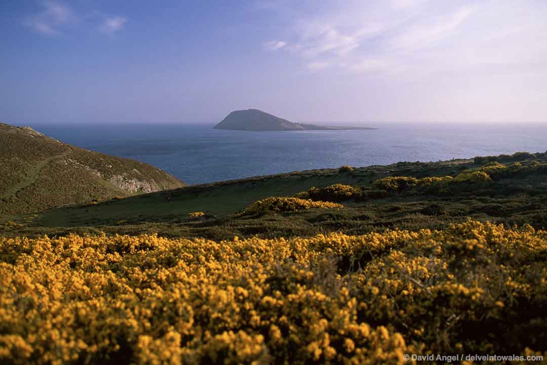 Image of Bardsey Island off the north-west coast of Wales