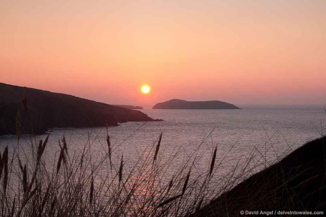 Image of Cardigan Island at sunset