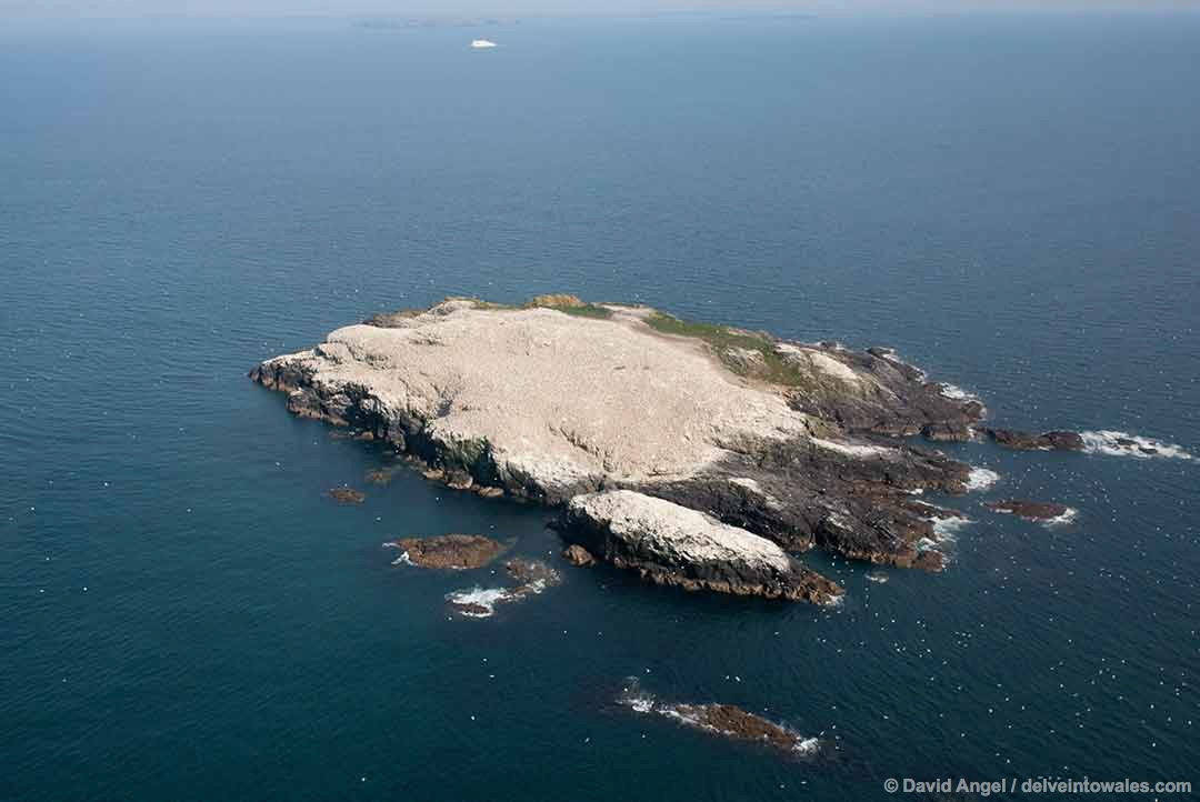Image of Grassholm Island, Pembrokeshire, Wales