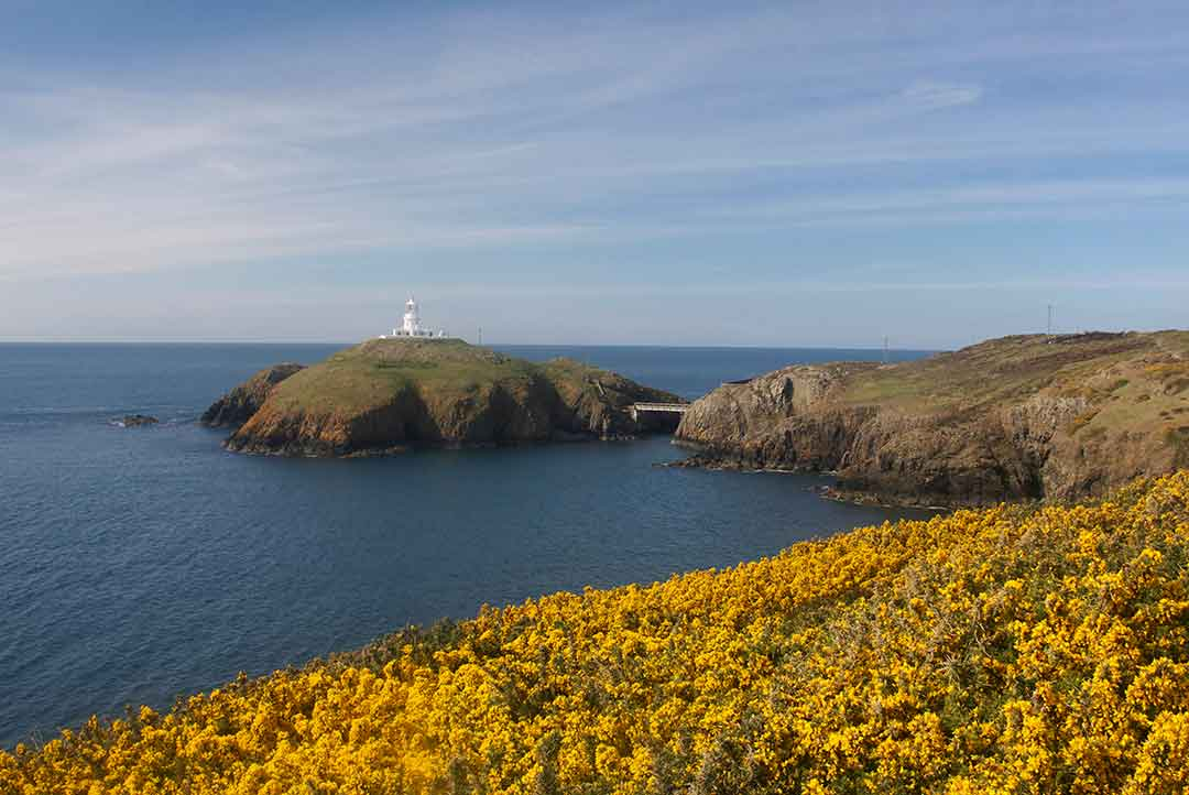 Image of Strumble Head lighthouse in north Pembrokeshire