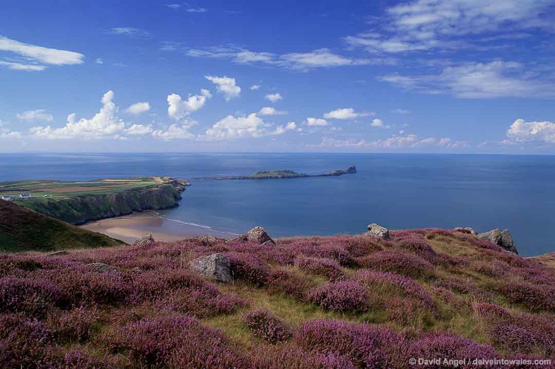 Image of Worm's Head tidal island from Rhossili, Gower, South Wales