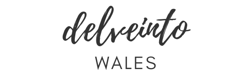 Image of Delve into Wales logo. A Wales travel guide